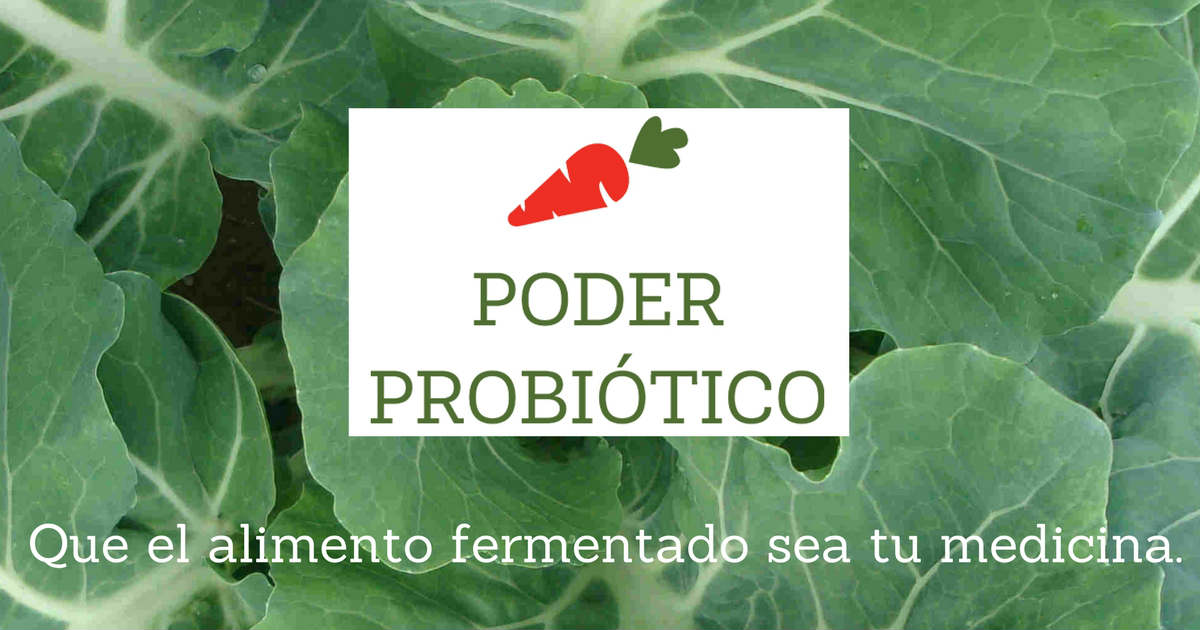 ¿Cómo hacer alimentos fermentados?