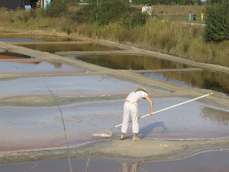 foto de persona cosechando flor de sal